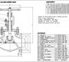 Imagem 1 de FIg 254 - Válvula globo WCB classe 300 flange ANSI